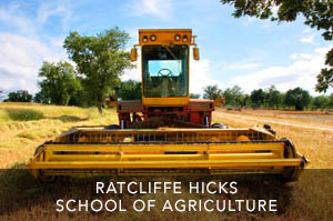 RATCLIFFE HICKS SCHOOL OF AGRICULTURE
