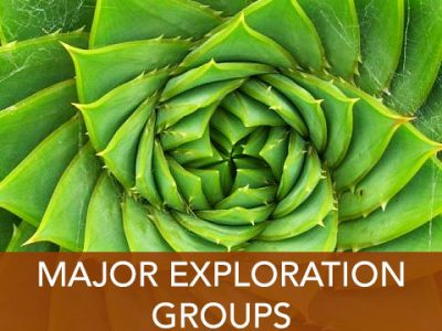 Major Exploration Groups